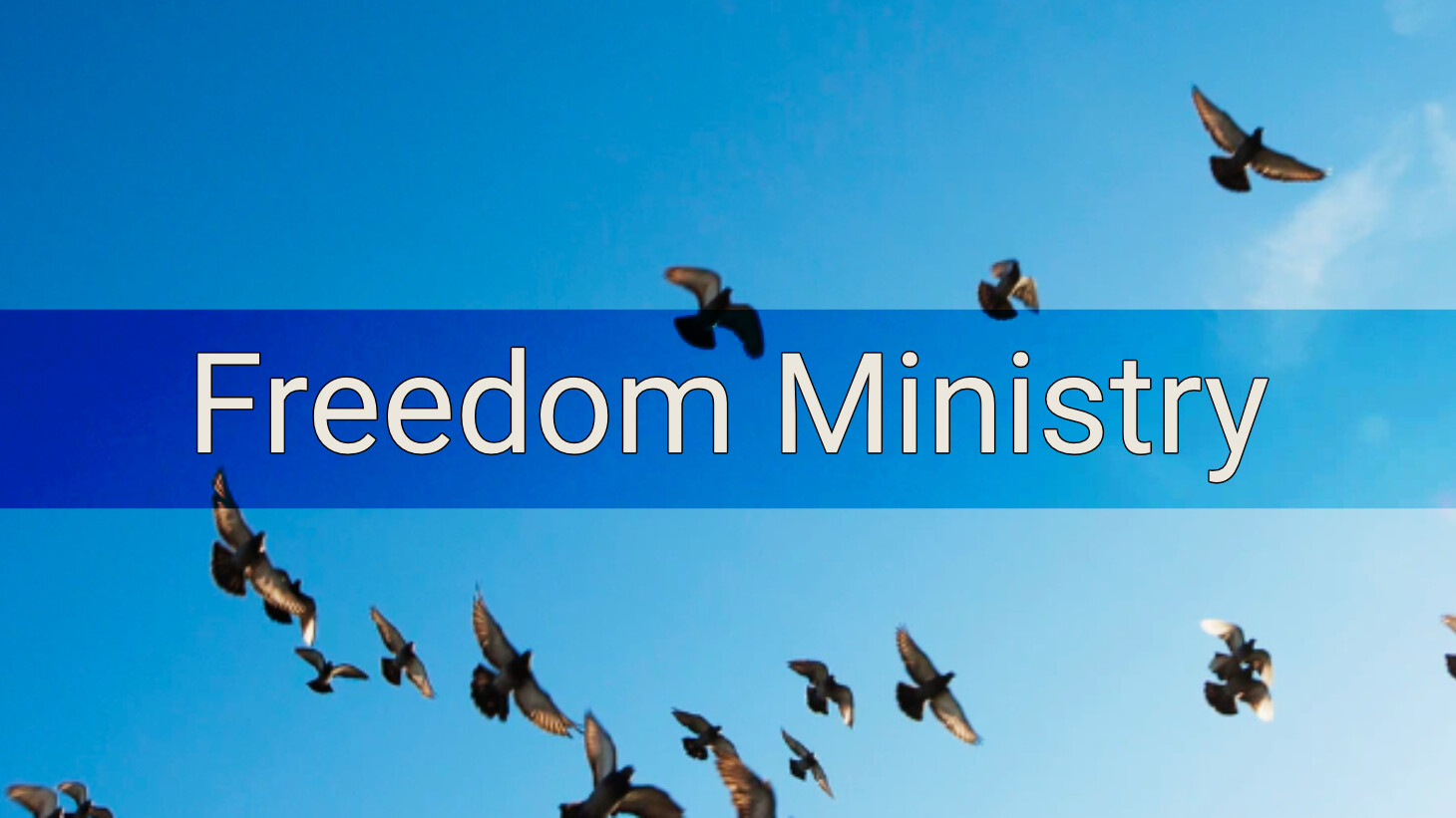Freedom Ministry