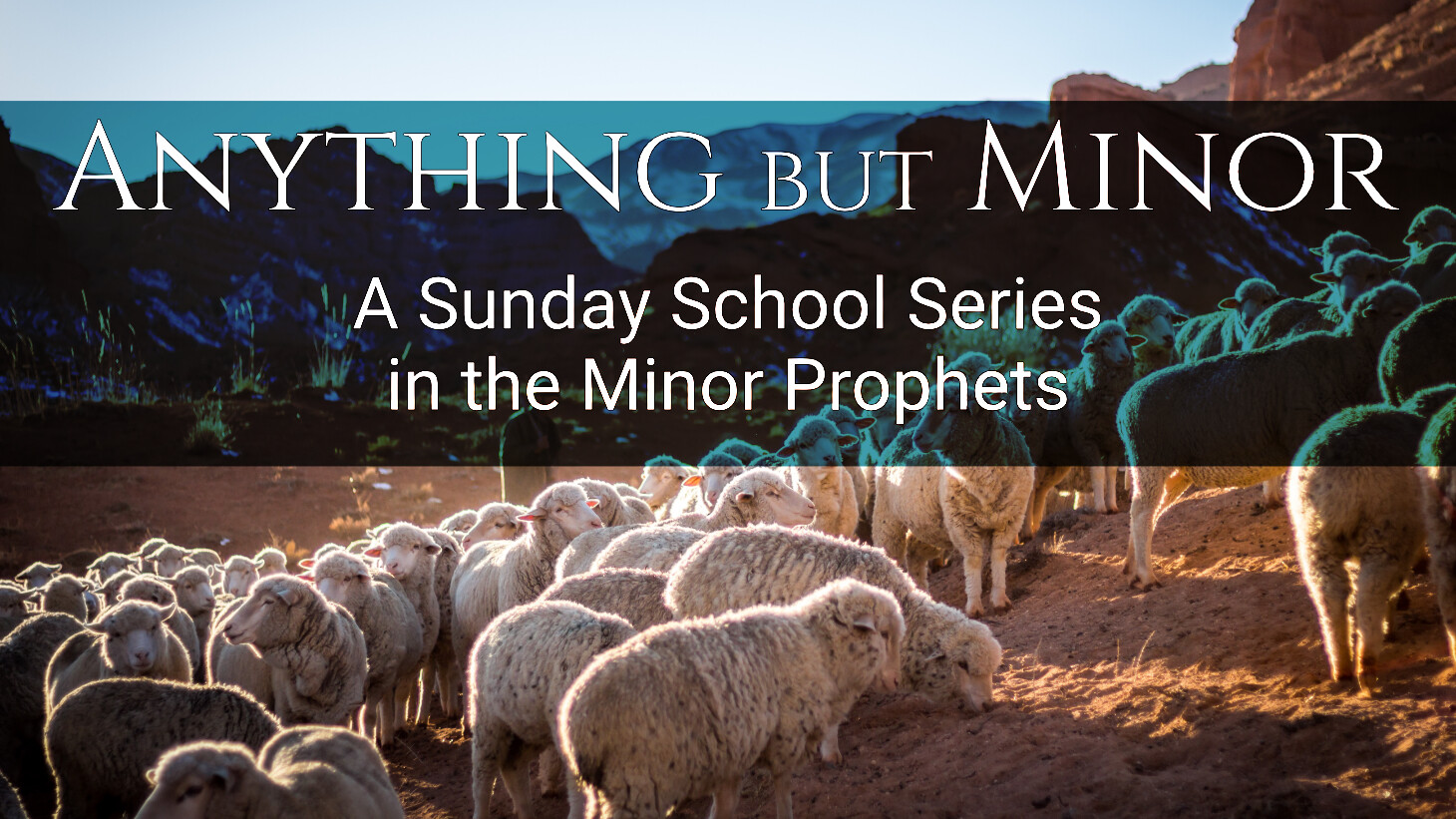 Sunday School | Minor Prophets | Micah, Zephaniah, Habakkuk